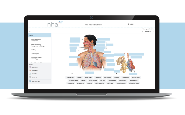 Med-Term-Simulation-in-laptop-blue-background